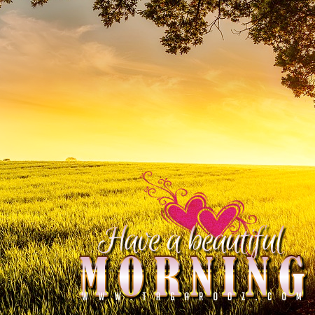 Have a beautiful morning | Good Morning Comments and Graphics - Tagarooz.com